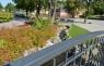 Valsts nozīmes pilsētbūvniecības piemineklis – Kandavas pilsētas vēsturiskais centrs